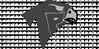 Torrey Pines HS logo