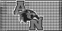 Aliso Niguel HS logo